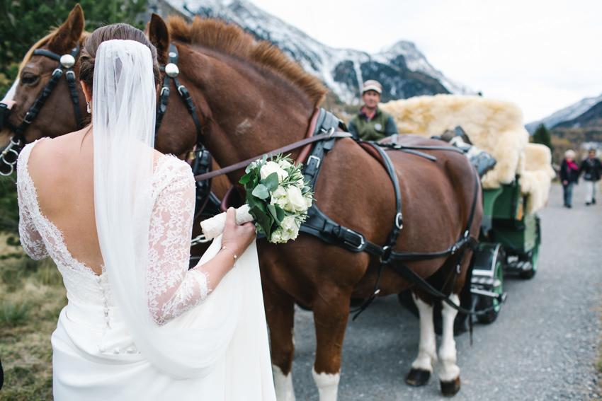 Swiss, Alps, Wedding, Bride Groom