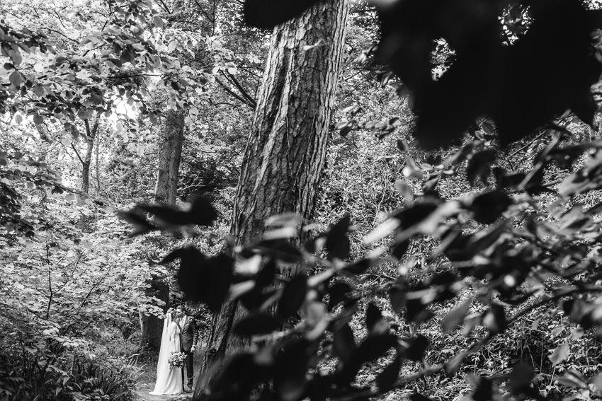 tros yr afon woodland