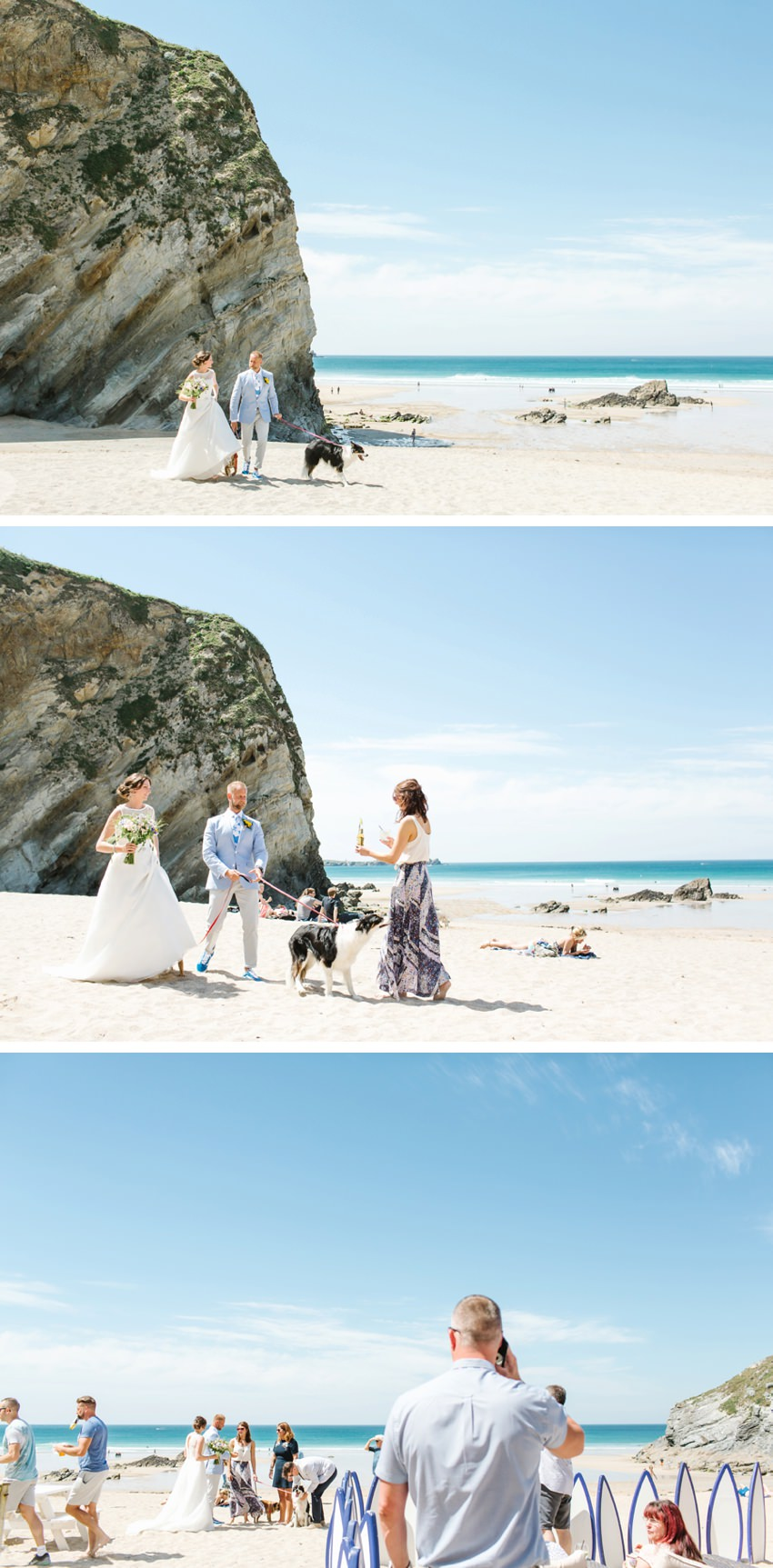 dogs, wedding, lusty, glaze, newquay